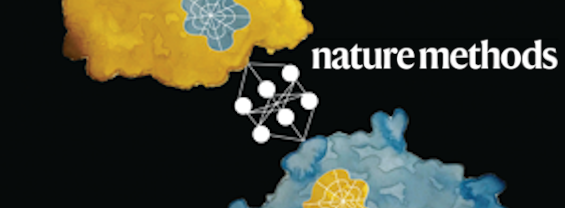 Nature Methods logo